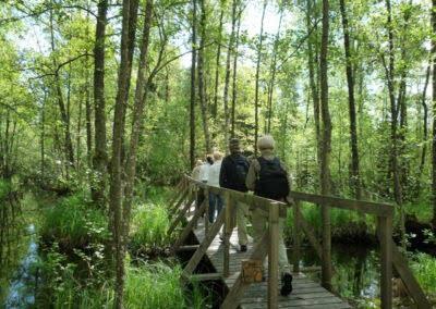 Vandra i Valle bro vandringsled